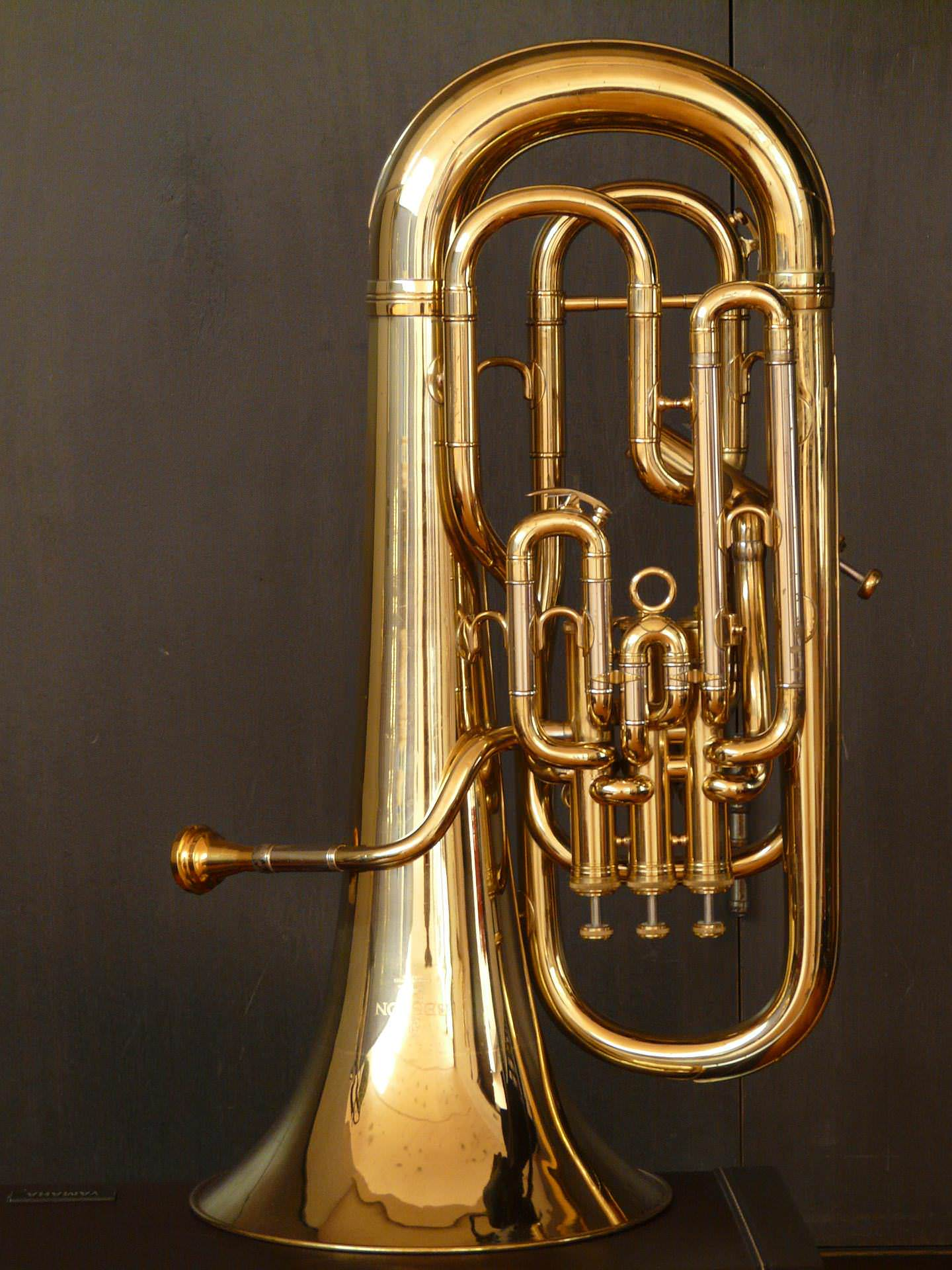 Tenorhorn, Bariton, Euphonium lernen: Tenorhorn-, Bariton-, Euphonium-Unterricht an der JMS
