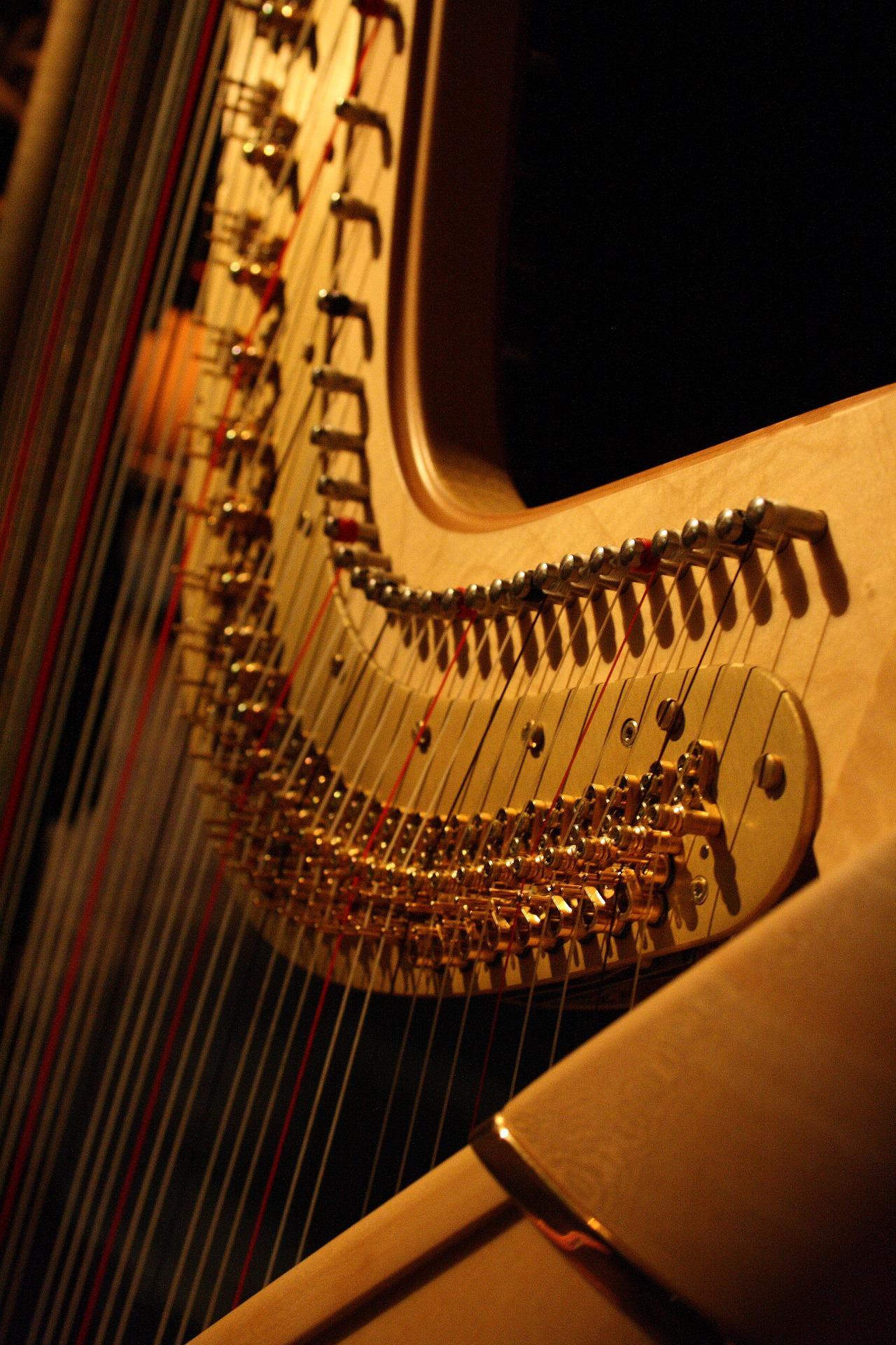 Harfe lernen: Harfe-Unterricht an der JMS